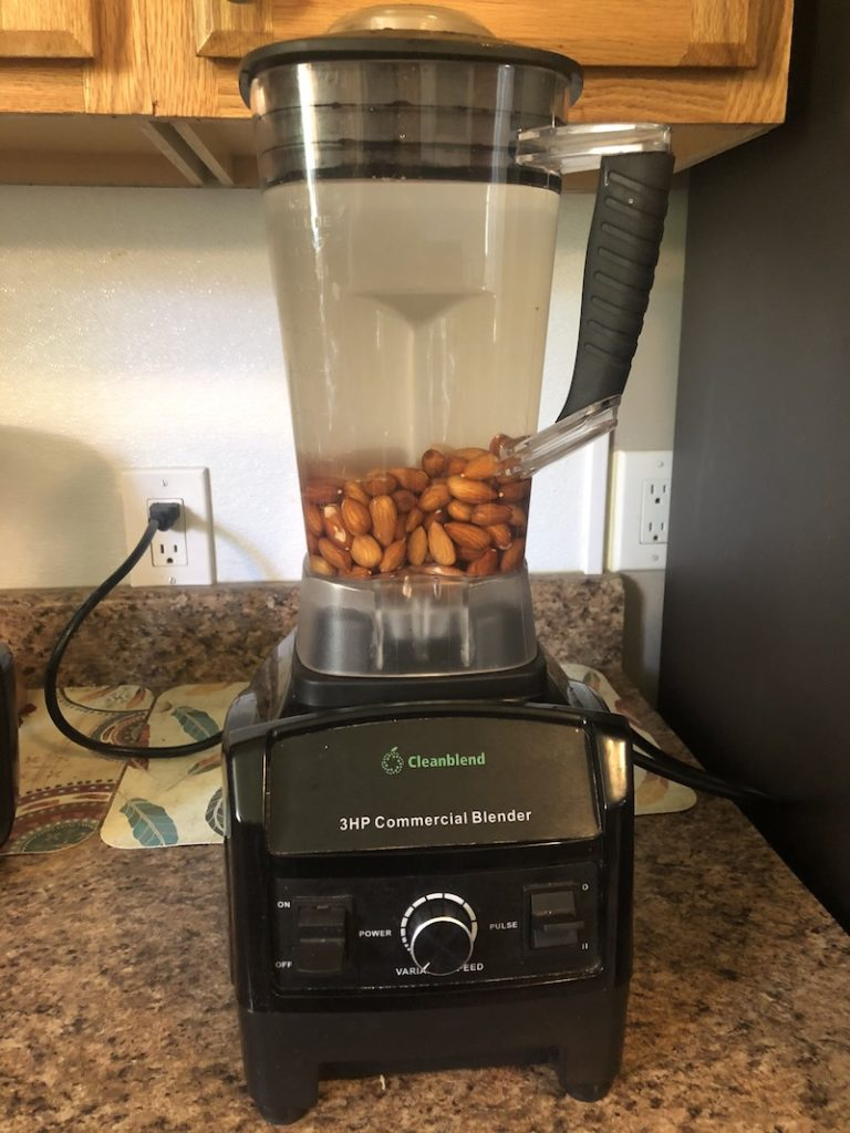photo of unblended almonds and water in blender